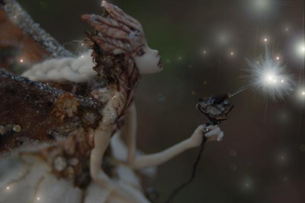 Sparrowtwilight7