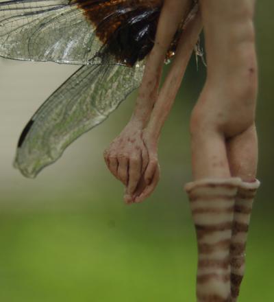 Dragonflyhands